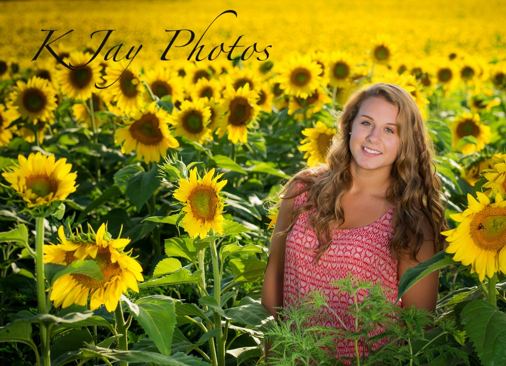 Sunflower senior pictures. K Jay Photos Photography, Madison WI Photographer